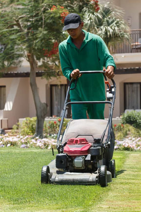 male gardener mowing lawn in Oshawa, ON